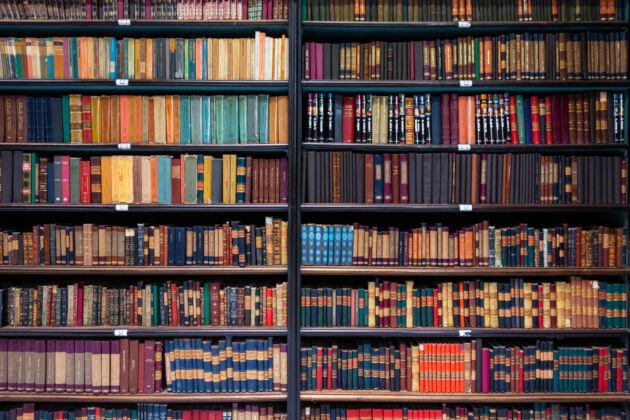 Os gêneros literários resultam dos diversos tipos de produção literária existentes.