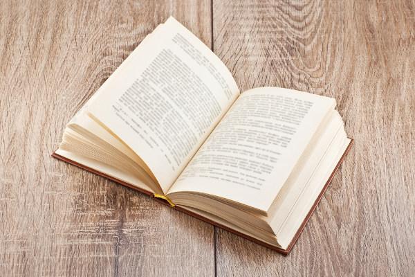 Livro aberto apresentando um texto com estrutura de romance.
