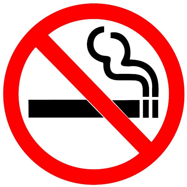 A placa acima, por meio da imagem, indica que é proibido fumar naquele local.
