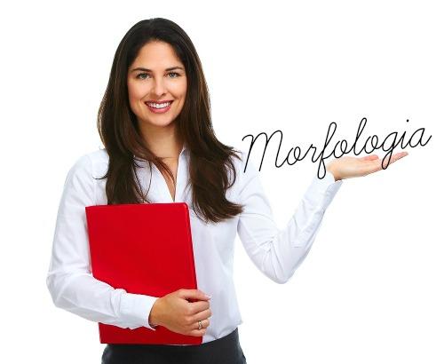 A Morfologia é o estudo sobre a estrutura, a formação e a classificação das palavras